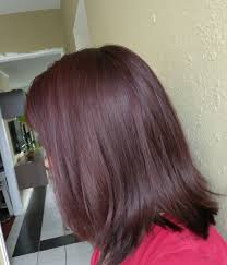 Esalon Hair Color Chart Not Your Daughters Makeup Blog Esalon Pearl Mahogany Review