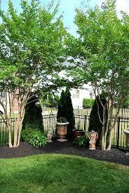 Best 25 Outdoor Plant Stands Ideas On Pinterest  Diy Yard Decor Plant Ideas For Backyard