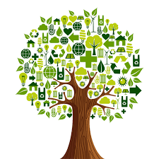 Recycling Recycling By Pedro Noriega On Prezi