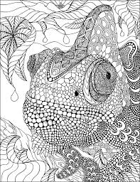 Small Picture Lovely Chamelon Zentangle by Phil Lewis Art Coloring Books for