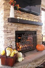 full size of elegant interior and furniture layouts pictures other uses for fireplace screens remodel