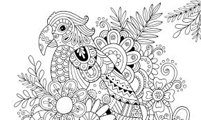 How To Draw Patterns Inspiration How To Draw Zentangle Patterns Hobbycraft Blog