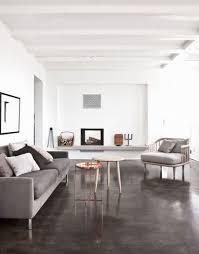 Best 25 Light Hardwood Floors Ideas On Pinterest  Light Wood Painted Living Room Floors