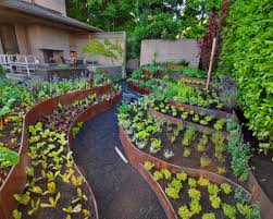 Small Picture Awesome Vegetable Garden Design Photos Garden Ideas New