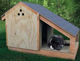 DogHouse1