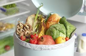 Image result for wasted food waste