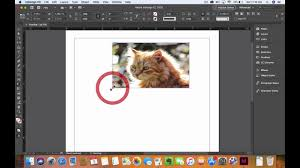 Free In Design How To Use The Free Transformation Tool In Indesign Cc