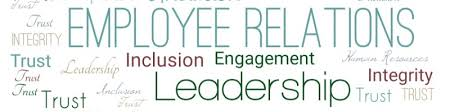 Brenda Steeves, SHRM-CP - Project Manager of Employee Experience ...