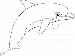 Small Picture Stunning Coloring Pages Whales Dolphins Photos Coloring Page