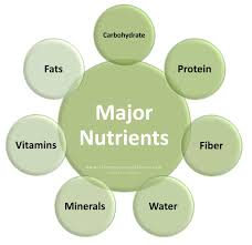 Protein Vitamins Minerals Fats And Carbohydrates Chart Pin En Micro Nutrients Vitamins And Minerals