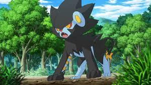Clemont (anime) | Pokémon Wiki