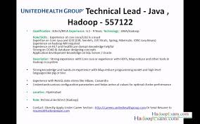 ... Neoteric Big Data Resume 11 Jobs By HadoopExamcom Hadoop And Bigdata  With Java ...