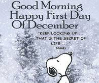 Image result for snoopy december images