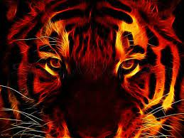 Fire Tiger Wallpapers - Top Free Fire ...