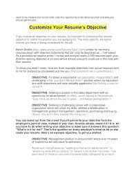 opening objective for resume revenue management objectives resume island spice