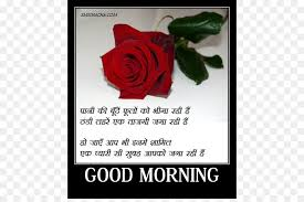 urdu poetry hindi love valentine s day whatsapp icon good morning