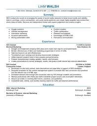 Seo Resume Examples Best SEO Resume Example LiveCareer 2