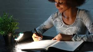 guidelines in writing an essay level