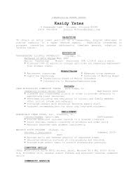 Sample Chronological Resume Template Free Resumes Tips
