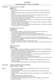Revenue Analyst Sample Resume Revenue Analyst Resume Samples Velvet Jobs 1