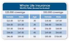 Compare Life Insurance Quotes 04 Quotesbae