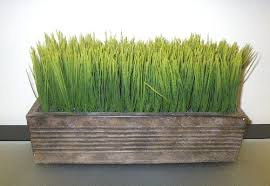 Img Source Bydianedanielwordpresscom  Fake Grass