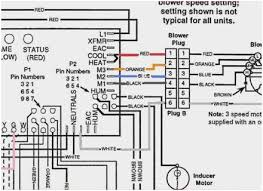 furnace blower motor wiring diagram wonderfully bryant air handler furnace blower motor wiring diagram wonderfully bryant air handler wiring diagram fan coil unit wiring