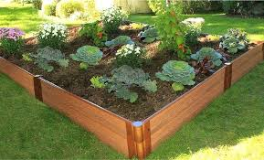 plastic raised garden beds raised garden beds bed kits frame it all planting for disabled
