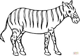 Silhouette Zebre Coloriage L Duilawyerlosangeles Silhouette Zebre Coloriage L