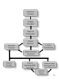 Oasis Organizational Structure
