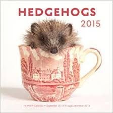 Calendar 2013 Through 2015 By Editors Of Race Point Publishi Hedgehogs 2015 16 Month