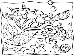 Small Picture Old Sea Turtle Lifespan Coloring Page Download Print Online