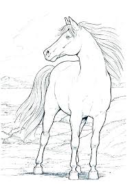 horse color pictures printable horse jumping coloring pages horses to color and print printable horse coloring