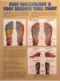 Foot Reflexology Foot Reading Wall Chart