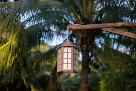 lighting outdoor trees. Lighting Outdoor Trees. Wonderful Trees Download Lamp For Hanging On Tree In The D
