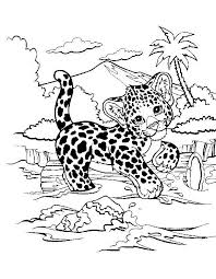 Awesome Snow Leopard Coloring Page Spurlme