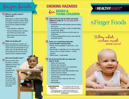 baby pamphlets finger foods tri fold brochures