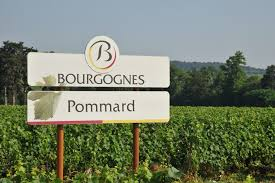 At the Heart of Burgundy - Château De Pommard