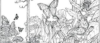 Nature Coloring Sheets Nature Coloring Pictures Nature Colouring