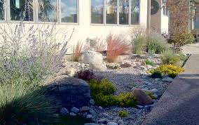 Small Picture Desert Garden Design Home Interior Design Ideas Home Renovation