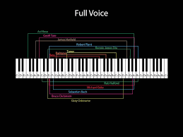 Octave Range Chart How Do I Know My Voice Type Vocal Vigor