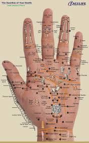 Hand Reflection Chart 65 Bright Reflexology Chart Arch