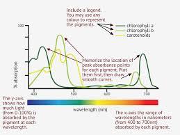 First Light Spectrum 2 1 Essential Ideas 2 1 9 Photosynthesis