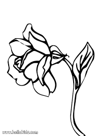 Small Picture Rose coloring pages Hellokidscom