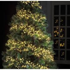 Outdoor Cluster Christmas Lights Christmas Lighting Christmas Lights 720 Led 9m Cool White