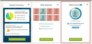 Which Ancestry Dna Test Is Best 23andme Vs Ancestry Vs Family