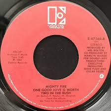 Mighty Fire - One Good Love Is Worth Two In The Bush / Look What You Made  Me Do (1981, Vinyl) | Discogs