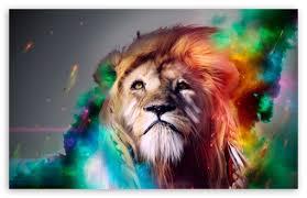 lion wallpaper hd widescreen.  Widescreen Download Beautiful Lion HD Wallpaper With Hd Widescreen L