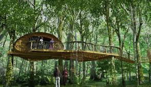 Canopy Treehouses Part  44 FileCanopy Cathedral Treehouse The Canopy Treehouses