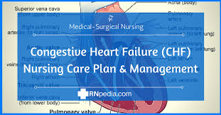 Nursing Care Plan For A Baby With Birth Asphyxia Congestive Heart Failure Chf Nursing Care Plan Management